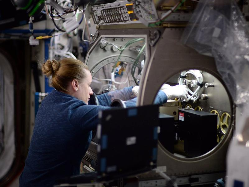 NASA astronaut Kate Rubins has been performing DNA decoding and sequencing while in space.