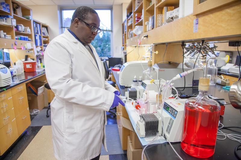 Dr. Tawanda Gumbo is director of the Center for Infectious Disease Research and Experimental Therapeutics at the Baylor Scott & White Research Institute.