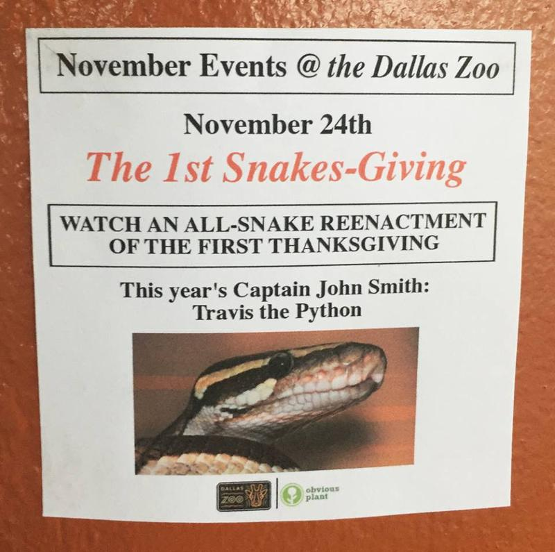 No, there won't be snakes re-enacting Thanksgiving next Thursday, but professional prankster Jeff Wysaski might have had you for a minute.