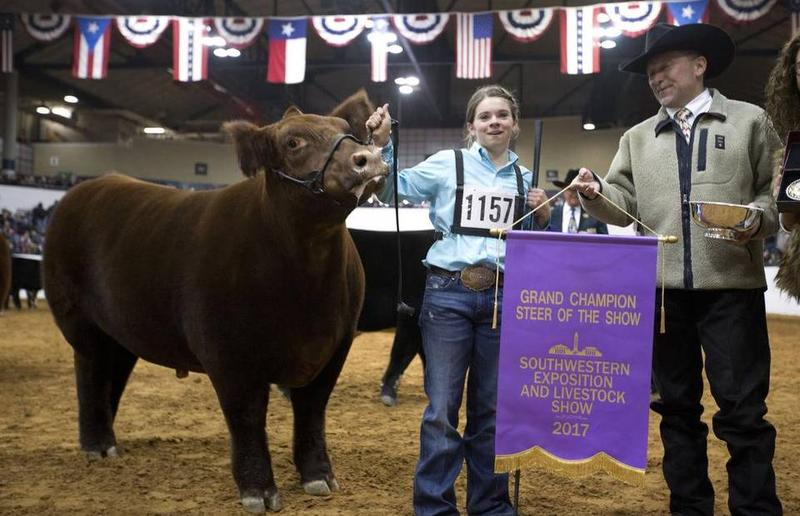 Rocco shown by Mikala Grady, a 15-year-old from Grandview, was purchased Saturday for $240,000 by the Women Steering Business.