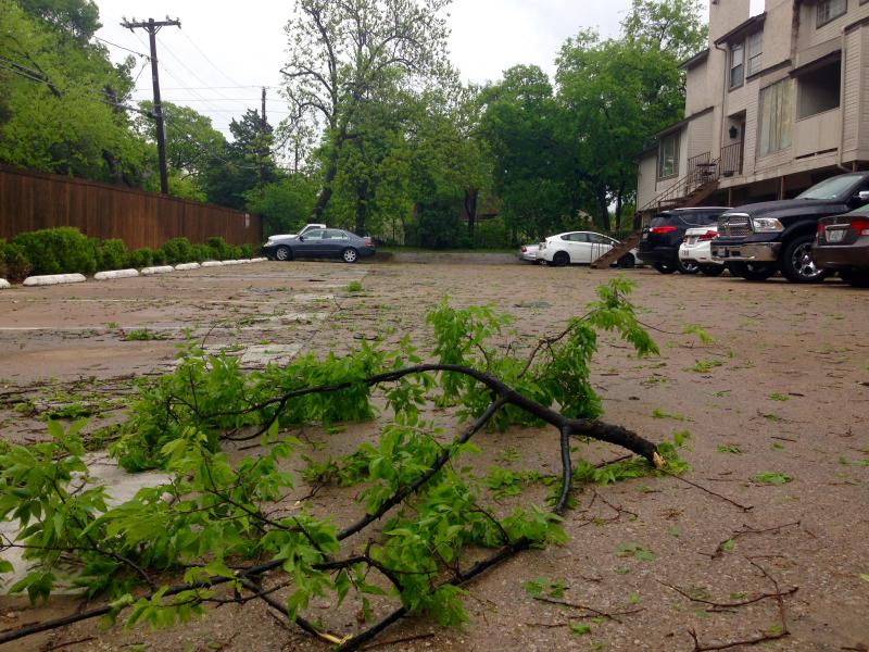 Damaging winds ripped off tree branches in East Dallas.