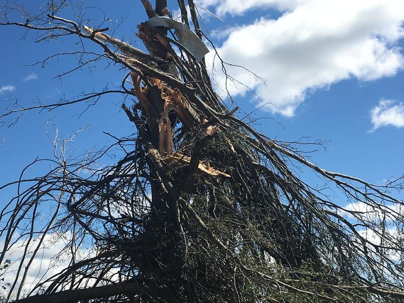 Damage from Saturday's night tornadoes in outside of Canton in Van Zandt County.