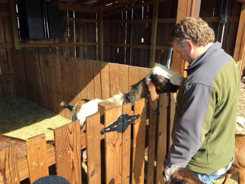 "Founder Daron Babcock visits a goat in the ""goat mansion"" at Bonton Farms in southern Dallas."