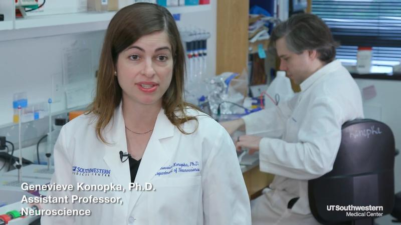 Dr. Genevieve Konopka is an assistant professor of neuroscience with the O'Donnell Brain Institute at UT Southwestern Medical Center.
