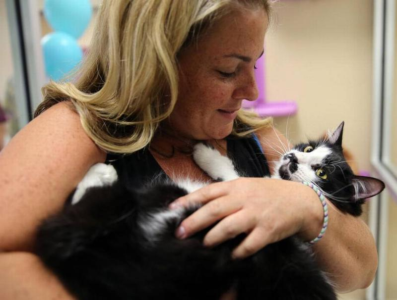 Carolyn Clement holds Barry the cat at the Clear the Shelters event at the Grapevine Animal Shelter and Adoption Center in July 2016.