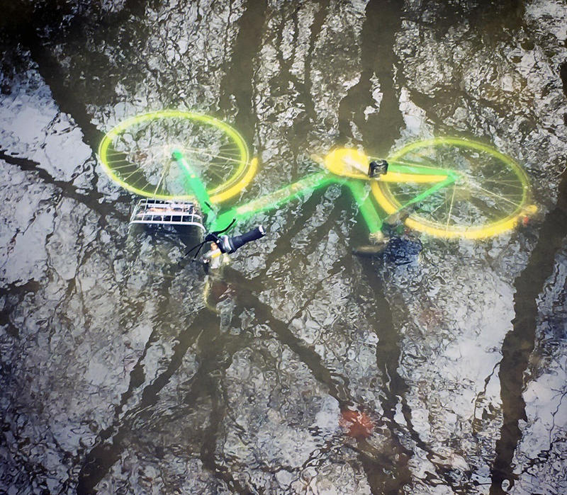A LimeBike submerged in a creek at White Rock Lake.