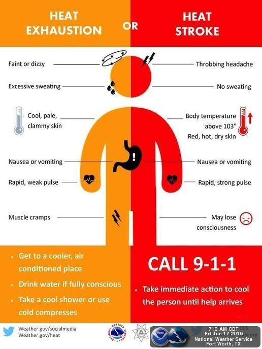 This graphic explains the difference between heat exhaustion and heatstroke, two common heat-related illnesses.