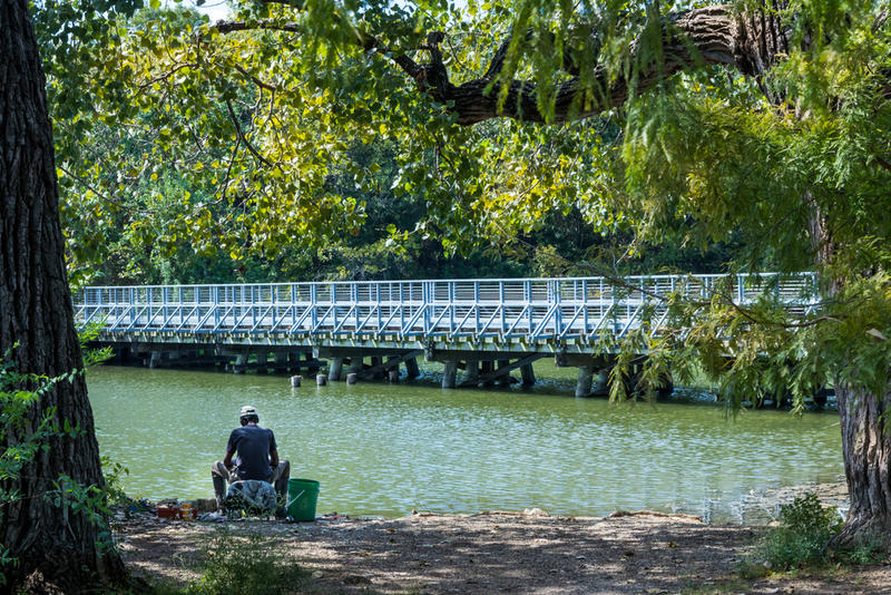 A lone fisherman stays in the shade at White Rock Lake in Dallas, Texas.