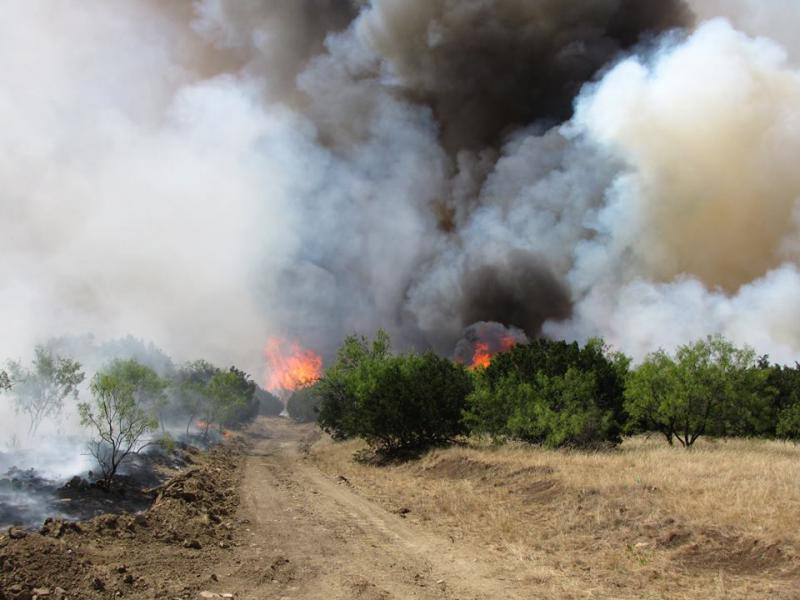 "The so-called ""Surprise Fire"" near Palo Pinto, Texas, has scorched about 4,500 acres since July 2."