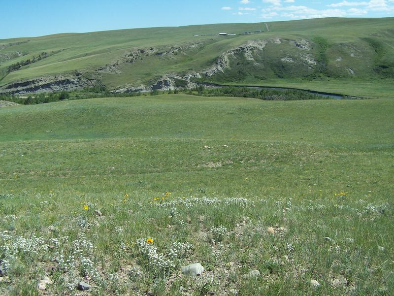 This photo features a prairie in Montana around one of the bison jumps and geoarchaeology localities.