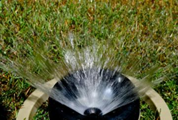Dallas is the first area city to make the twice-a-week watering rule permanent.