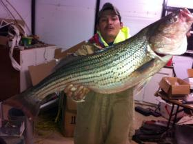 Lake Texoma has some big Striper just waiting to be reeled in.