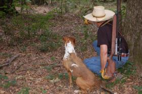 Big bore air rifle specialist Terry Tate from northeast Texas sends his faithful hog dog, Lacy out on the track of a hog.