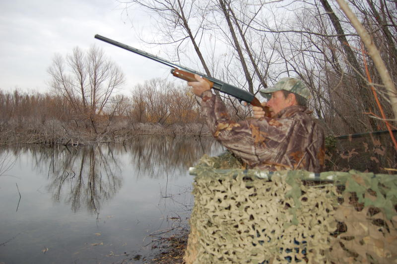Professional guide Larry Large seen here hunting duck from behind a blind.