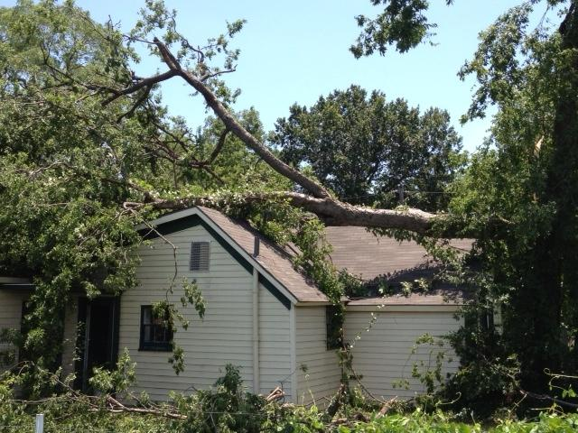 House on Chestnut St. receives damage from a fallen tree