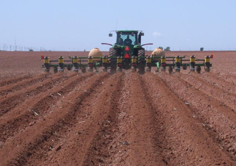 Cotton planting in West Texas. With many West Texas producers expected to devote more acres to grain, cotton acreage statewide could drop.