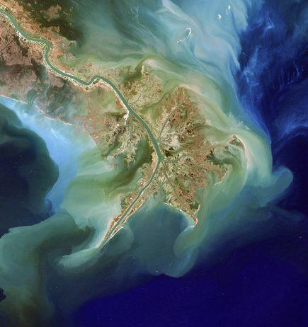 A dead zone-causing algal bloom stained the Gulf of Mexico green in 2007.