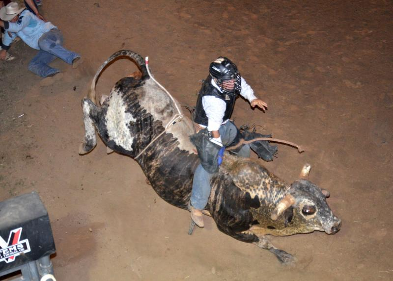 Bull riding was a crowd favorite.