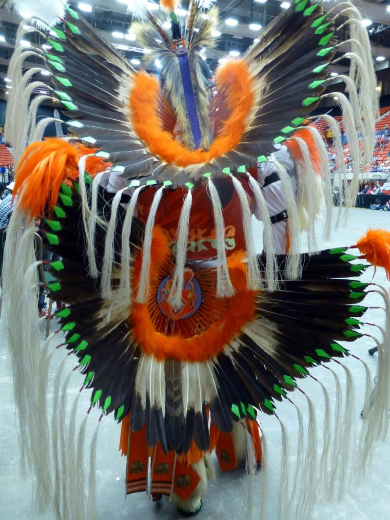 Feathers worn by a dancer at the Red Earth Festival