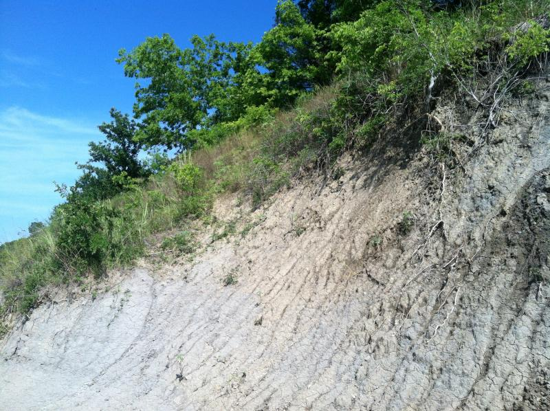 The steep cliffs of the North Sulphur's riverbed.