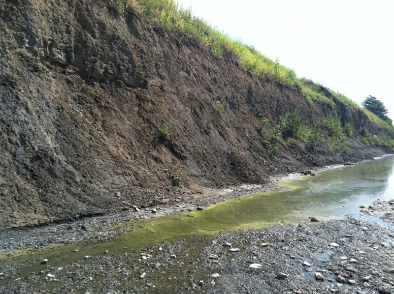 With little downriver flow between rains, ponds in the riverbed can become stagnant.
