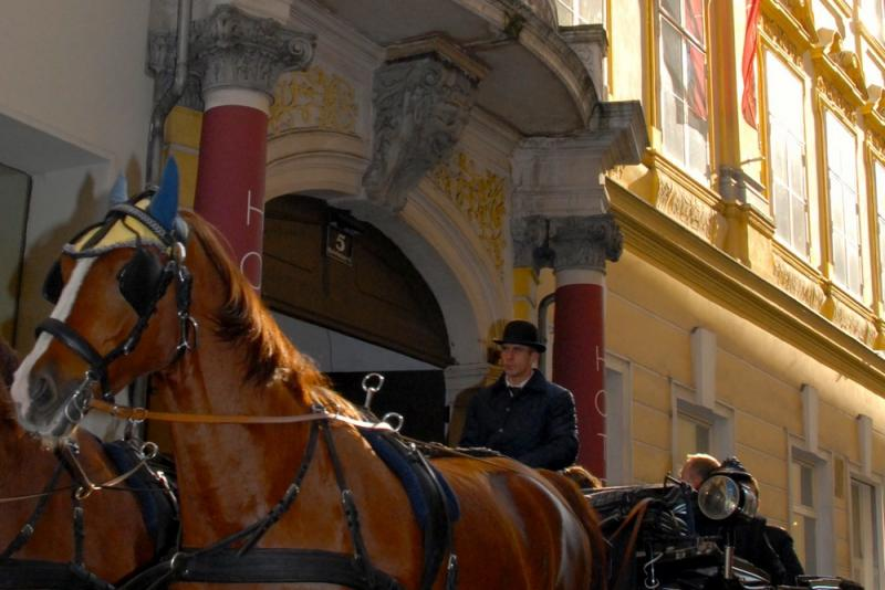 Entrance to the Pertschy Palais Hotel, behind a passing horse-driven carriage.