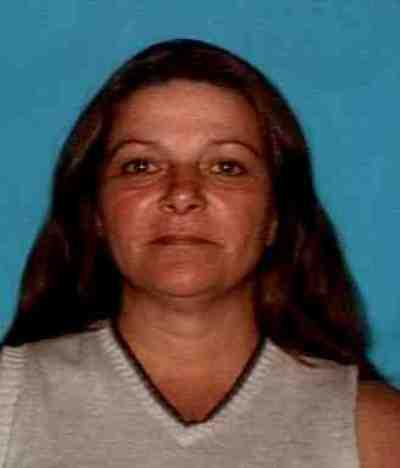 A driver's license phoro of Lisa Chandler, the Wolfe City-area woman missing since 2007.
