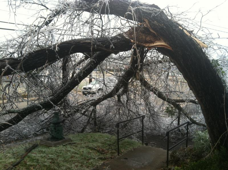 The effects of the recent ice storm are still evident throughout Northeast Texas.