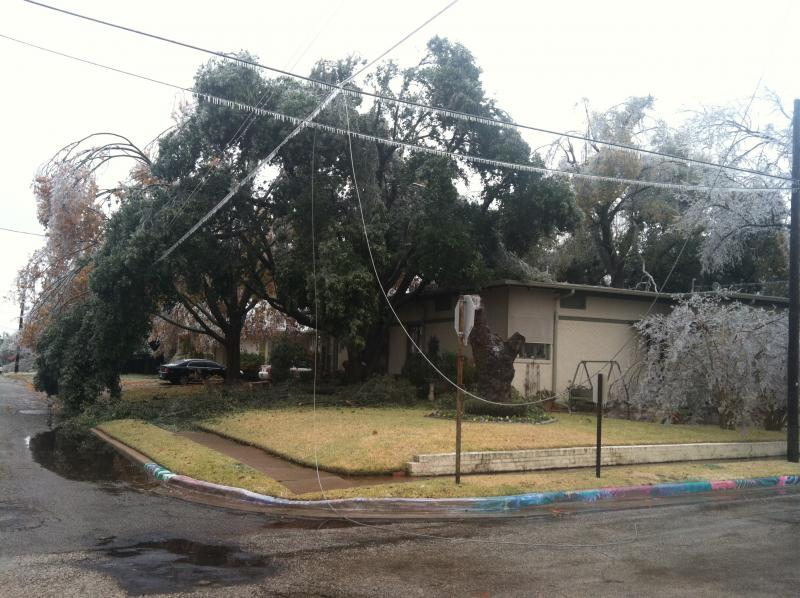 Downed power lines, like this one in Commerce, have left hundreds without electricty.