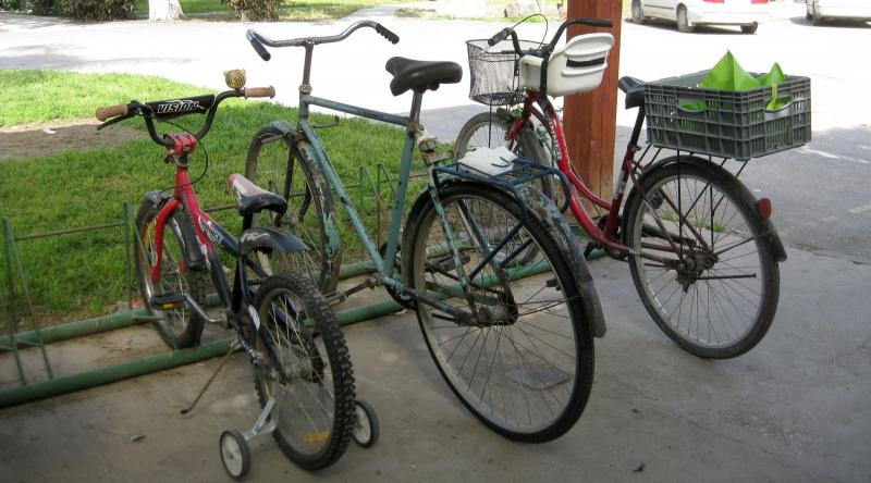 Communal bicycles at a kibbutz in Israel.