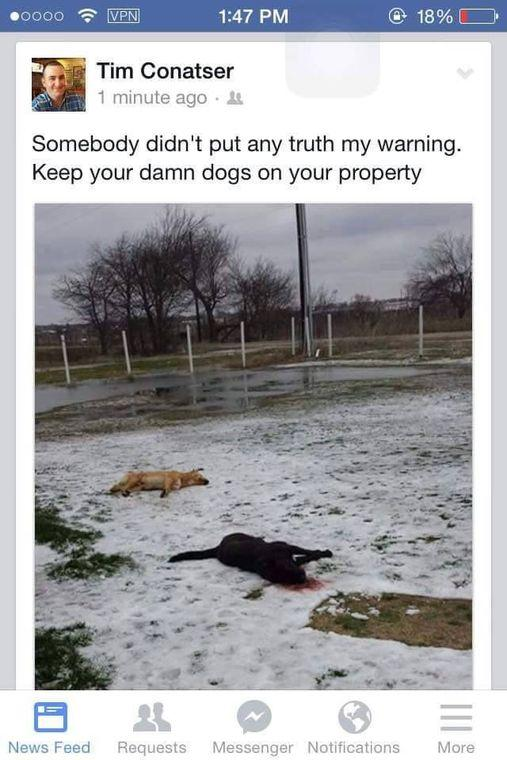 This Facebook post showing two apparently dead dogs led to a Union Valley firefighter being dismissed from the department, the Herald-Banner reports.