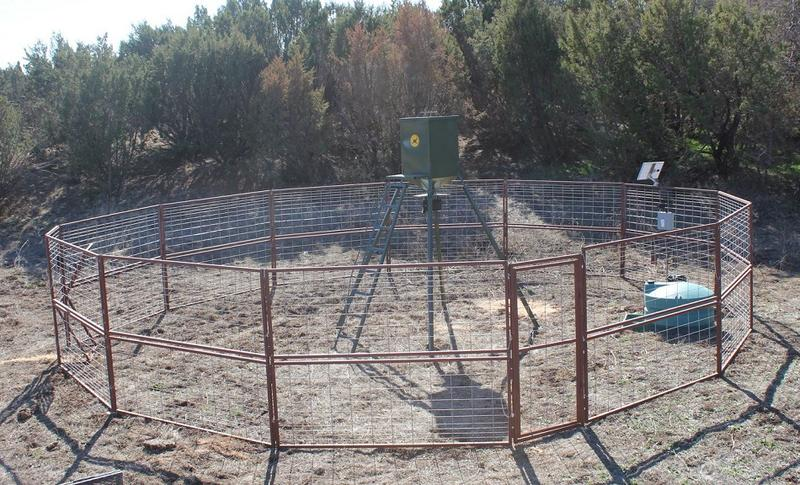 Here is an example of a large wild hog trap from www.goinfencing.com and Luke speaks with Don Gresham about this and unique ways of trapping wild hogs.