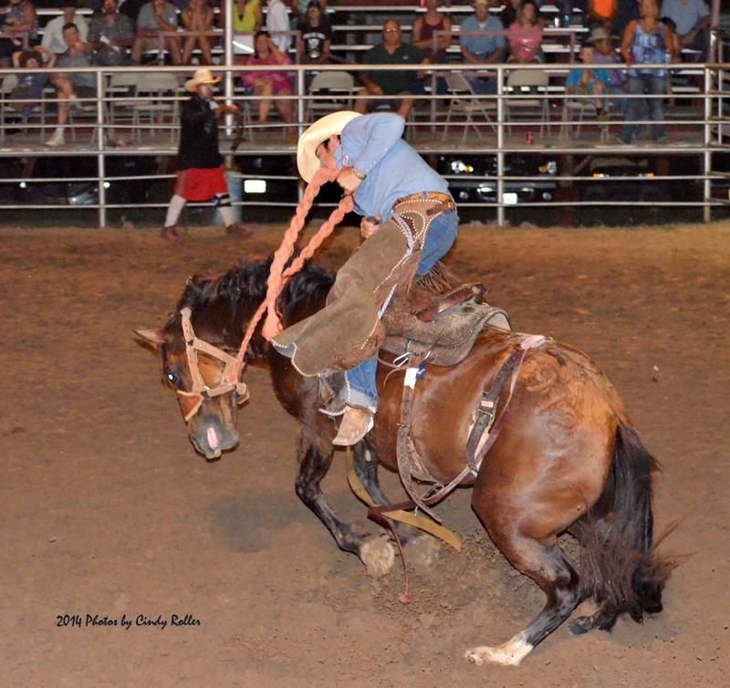 The Delta Roping Club presents the 67th Cooper Rodeo this weekend with $7,500 added money.