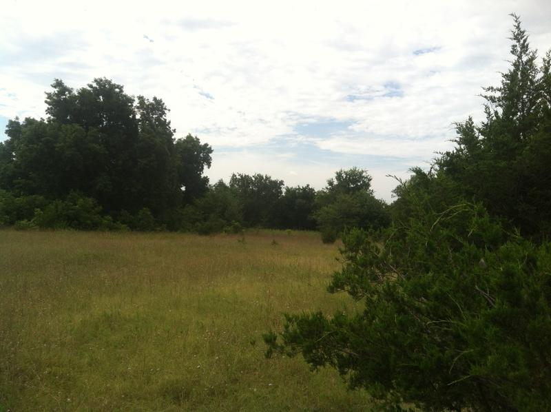A vacant property between Farmersville and Lake Lavon is the site of a proposed Muslim cemtery.