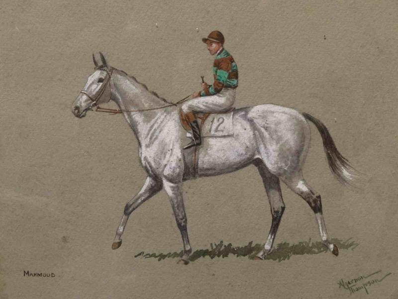horseracingcollector.com