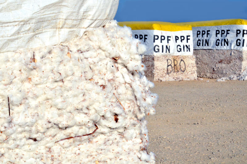 Bales of cotton await to be ginned outside of PPF Gin and Warehouse in Lake Creek, Texas.