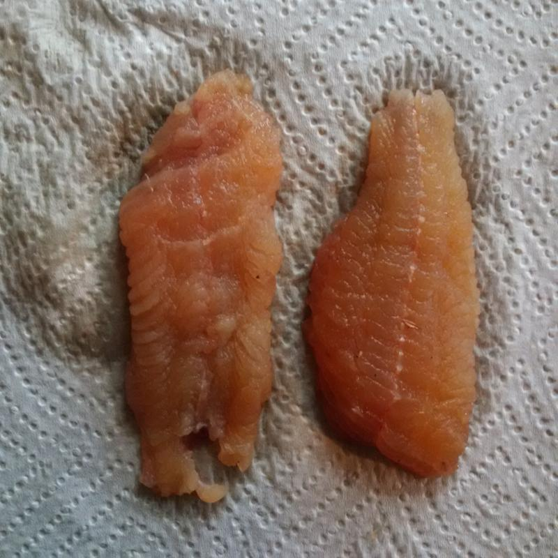 Bullhead Catfish fillets