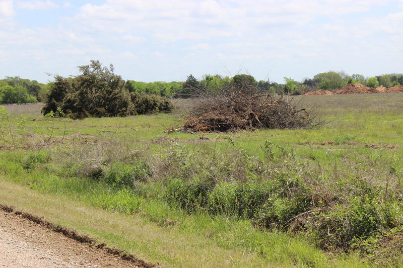 Downed trees and piled earth at a sand mining property in Fannin County.