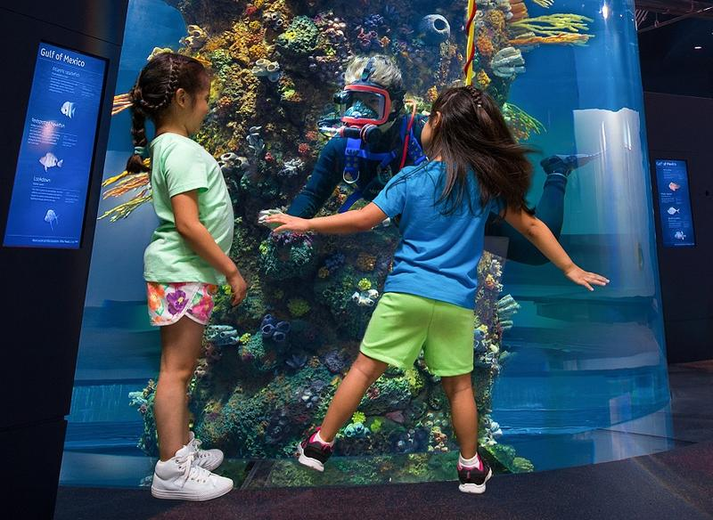 Dancing with an aquarium diver at Moody gardens. This aquarium is a converted oil rig. Open the slideshow to see the entire display as it towers towards a windowed roof.