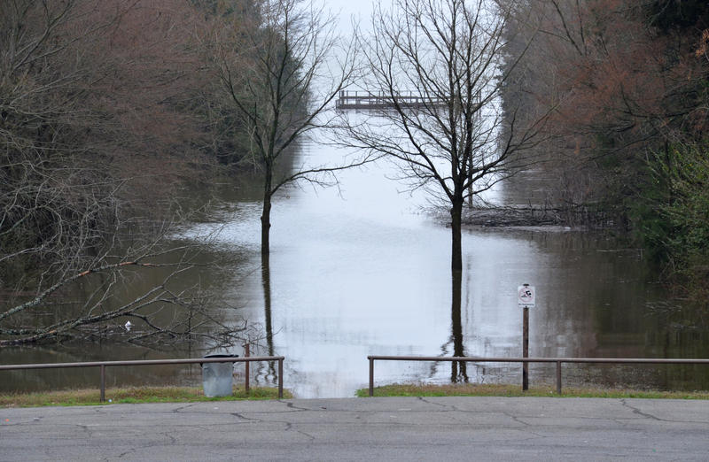 Fishing docks on Cooper Lake are not accessible due to flooding.