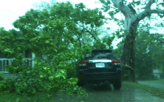 A tree covers a car in Commerce following Tuesday's storms