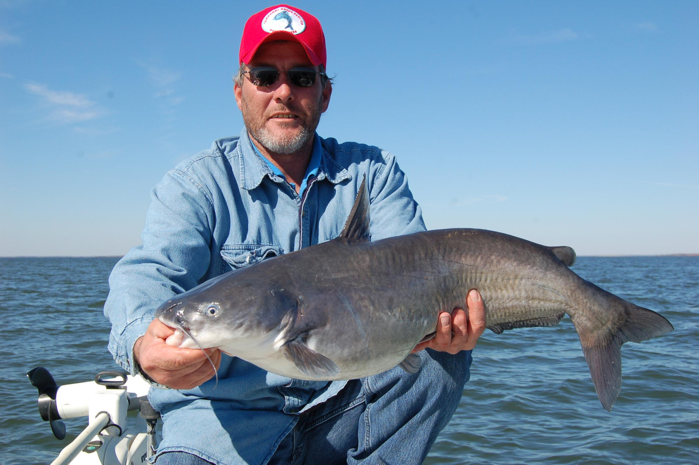 Audio catfish on lake tawakoni 88 9 ketr for Lake tawakoni fishing guides