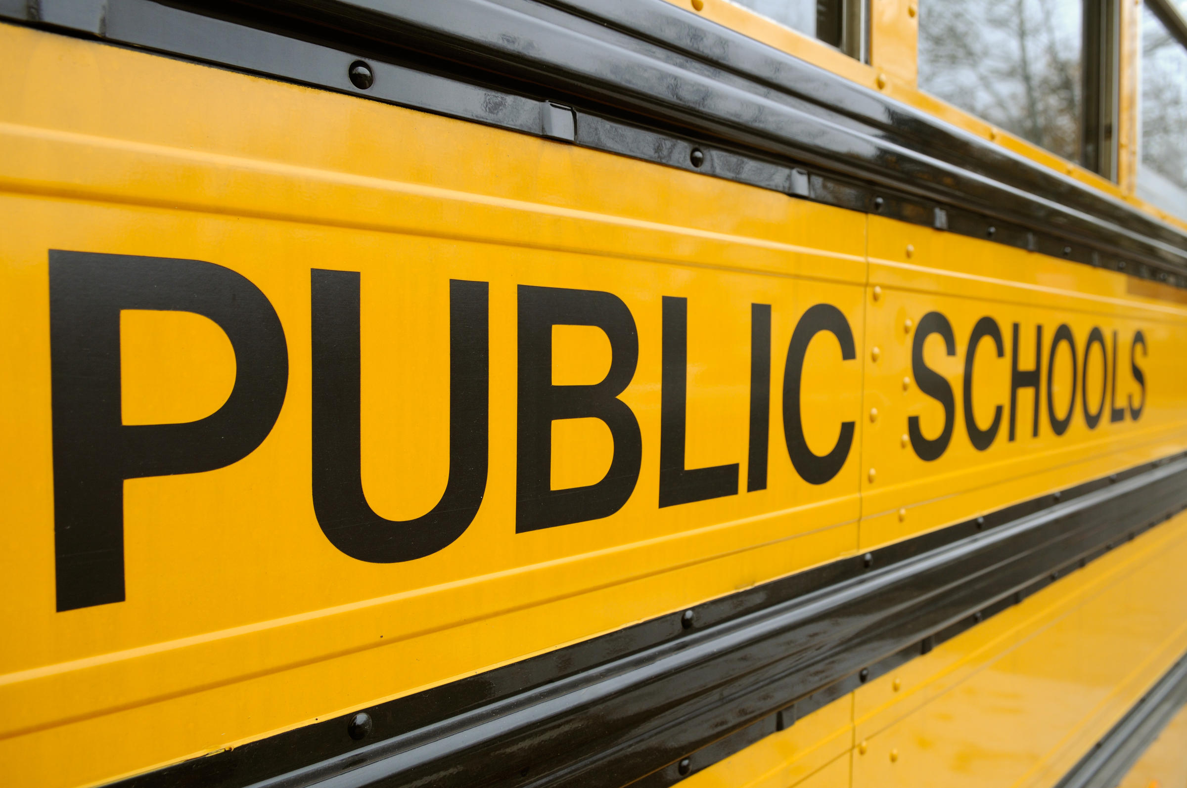 public education and national systems of The national alliance for public charter schools is the leading national nonprofit  organization committed to advancing the public charter school movement.