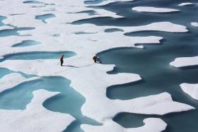 The sea ice atop the Arctic Ocean can—as shown in this photograph from July 12, 2011—look more like Swiss cheese or a bright coastal wetland.