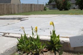 Flowers grow in what was once a garden area for a Moore home destroyed by the May 20 tornado. Address numbers are marked on foundations or exteriors of vanished or ruined homes.
