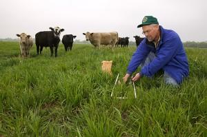 In an experimental pasture at the Grazinglands Research Laboratory near El Reno, Okla., ecologist Brian Northup collects samples to describe availability and quality of forage.