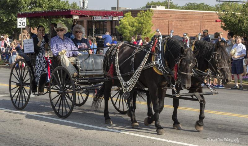 A horse-drawn wagon rolls through the 2013 LibertyFest Parade.
