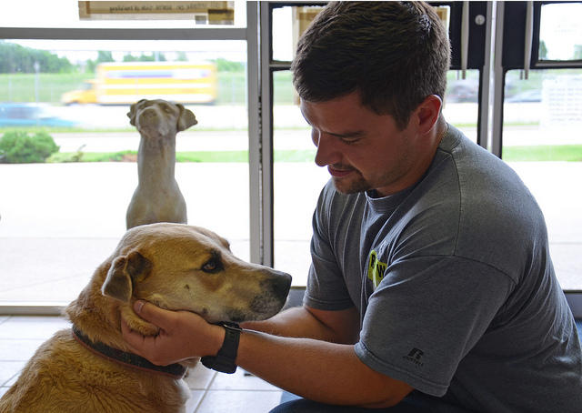 Those impacted by the Moore tornadoes continue to be reunited with their animals. The Oklahoma Department of Agriculture, Food and Forestry (ODAFF) worked with the U.S. Department of Agriculture's (USDA) Animal and Plant Health Inspection Service (APHIS)