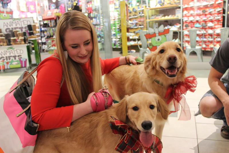 Melissa Farley sits with her two golden retrievers Lucy and Ethel after having pictures taken with Santa