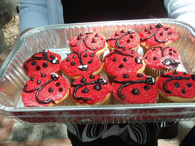 Ladybug bake sale cupcakes.